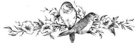 cropped-birdsbranchesdrawingvintagegraphicsfairy4